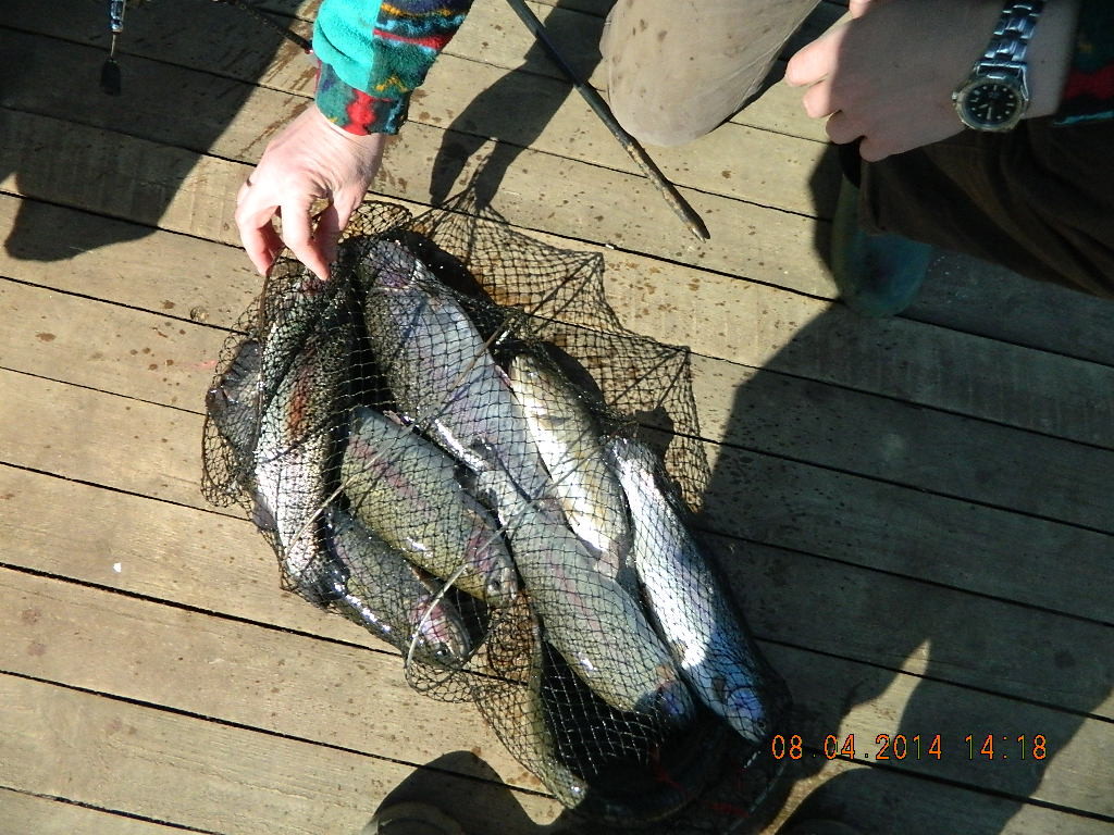 раменское рыбалка платники